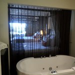 See-through curtain between bathroom and rest of room