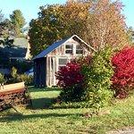 Foto de Ambrosia Farm