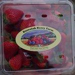 Kareelah Berry Farm Eco friendly disposable box for picking strawberries