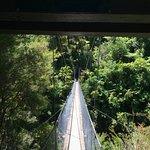 Abel Tasman Coast Track Foto