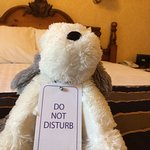 The world's cutest do not disturb sign at the Low Wood