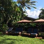 Foto di Paia Inn