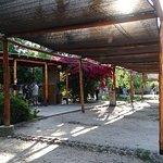 Photo of Cabanas Valle Pintado