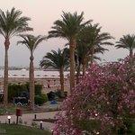 Grand Seas Resort Hostmark Foto