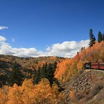 Picture of the train along the fall scenery.