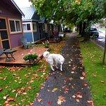 ภาพถ่ายของ Kaslo Motel