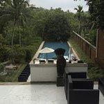 Tamarind Hill Foto