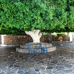 Creta Maris Beach Resort Foto
