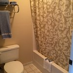 A clean bathroom is extremely important & we liked the non-generic fluffy towels & shower curtai