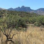 Foto de Catalina State Park