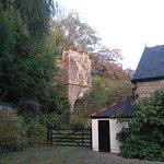 Foto di St Benet's Abbey