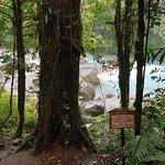 Private trail to Rio Celeste