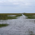 "Our ""road"" through the Everglades."