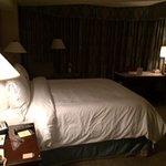 Omni 17th Floor room