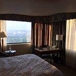 View 17th Floor