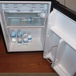 mini fridge with free water