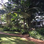 Karen Blixen Coffee Garden & Cottages Foto