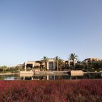mindythelion - royal palm - marrakech - morocco - luxury resort reviews & content creation