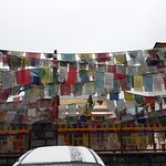 Buddhist Flags while entering the monastery