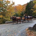 Horse drawn carriage crossing the bridge to access Day Mountain via the Carriage Road