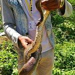 Lokobe Nature Special Reserve Foto