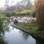 Foto de Zoo Zürich