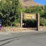 Zdjęcie Palmitos Park