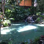 Pond by Great Ceremonial House (lobby) entrance