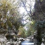 Grotte del Bussento