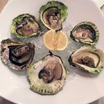 Ston Oysters