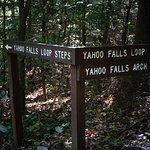 Yahoo Falls - Big South Fork NRRA