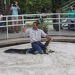 alligator wrestling and educational event