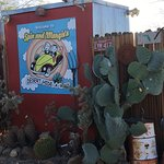 Spin and Margie's Desert Hideaway Foto