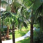 Sheraton Suites Key West Foto