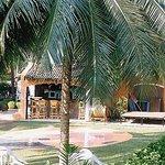 Sonesta Inns Foto