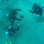 Seasport Divers Foto