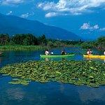 Lake Kerkini - Serres