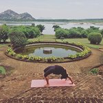 Perfect setting for a calming yoga session.