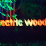 electric woods