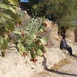 Photo of Ecotourisme et Randonnees