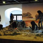 One of the larger exhibits, a diorama