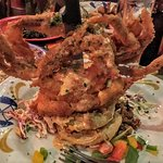 Soft shell crab on fried green tomatoes and slaw