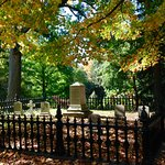 Foto de Mt. Auburn Cemetery