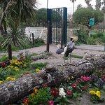 Photo of Phoenix Parc Floral de Nice