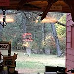 Look closely and you can see a deer in the yard. This shot was taken from the bar.