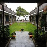 Our courtyard