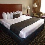 Photo de BEST WESTERN PLUS Sterling Hotel & Suites