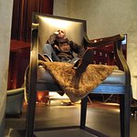 The big chair, take your own picture of royalty.