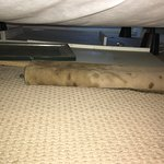 Underneath my bed!