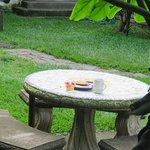 Zona del patio que sirve para lectura, desayuno, café